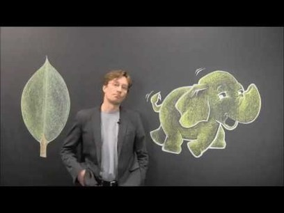 Big Data, MongoDB vs Hadoop - YouTube | R, SAS, SPSS ,Big data, JSON and anything a Predictive Analyst Needs | Scoop.it
