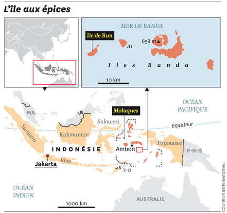 INDONÉSIE • Ile de Run contre Manhattan: la guerre de la noix de muscade | Courrier international | Kiosque du monde : Asie | Scoop.it