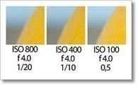 La sensibilidad ISO y la Importancia de una Correcta Exposición | exposició | Scoop.it