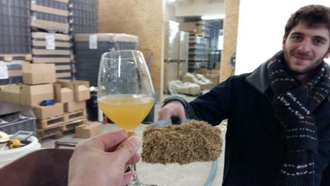 Zone-AH! | Paris Beer Week | Agriculture urbaine, architecture et urbanisme durable | Scoop.it