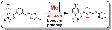Profound Methyl Effects in Drug Discovery and a Call for New C[BOND]H Methylation Reactions | CHEMISTRY NEWS | Scoop.it