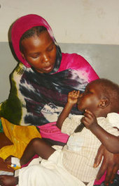 Millions face health care crisis in Darfur - World Health Organization (press release)   Public Health and Health Promotion   Scoop.it