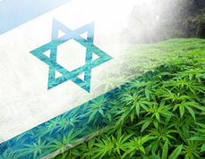 Israel to More than Double the Amount of Physicians Prescribing Medical Marijuana   Should marijuana be legalised in Australia?   Scoop.it