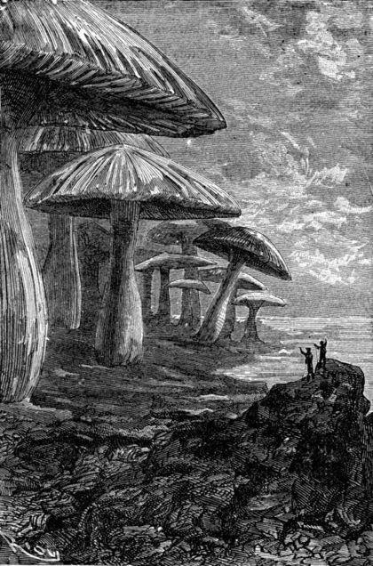 Voyage au centre de la terre – Jules Verne - Maze Magazine | ART, His Story are Culture for ALL | Scoop.it