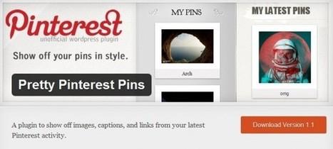 Añadiendo los elementos de una categoría de Pinterest en WordPress | VIM | Scoop.it