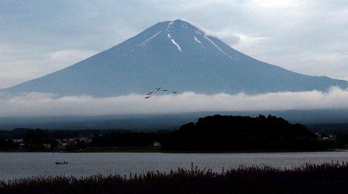 Mount Fuji, So Popular It Hurts