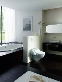 Geberit : une toilette avec jet nettoyant | Immobilier 2015 | Scoop.it