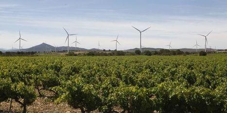 Le Monde - Energies renouvelables - Les énergies vertes feraient gagner plus de 3 points de PIB à la France | CAP21 Le Rassemblement Citoyen | Scoop.it