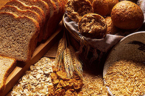 Why You Should Avoid Eating Grains | Efficient Gains | the paleo canuck | Scoop.it