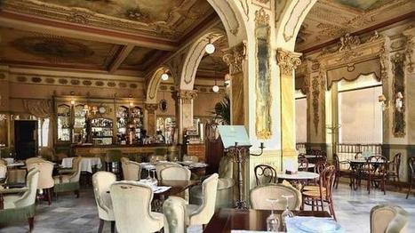 Ocho bellísimos cafés en España con mucha historia   Temas varios de Edu   Scoop.it