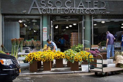 Frolic and Fun at Chelsea FlowerMarket   New York Parenting   Scoop.it