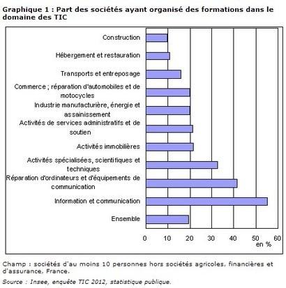 1/3 des sociétés utilise un  ERP Etude Insee sur la présence des TIC dans les entreprises françaises | Logiciel ERP sur mesure | Scoop.it