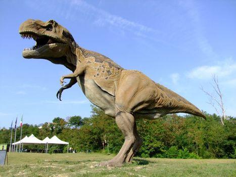 Le Pietre del drago: Parco dei dinosauri, Matelica | Le Marche un'altra Italia | Scoop.it