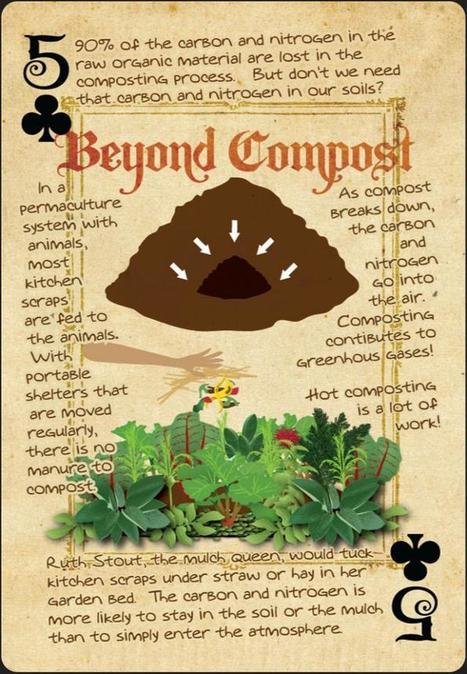 the downsides of composting (composting forum at permies) | Think Like a Permaculturist | Scoop.it