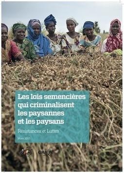 Les lois semencières qui criminalisent les paysannes et les paysans : résistances et luttes | Questions de développement ... | Scoop.it