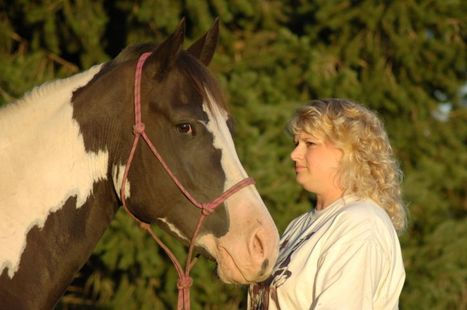 Patient whisperer: How horsemanship teaches doctors | Articles | Kathie Melocco - Health Care Social Media Tips | Scoop.it