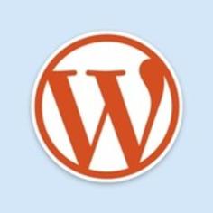 [Success Tool Kit] Social Strategies 1.1 WordPress   Crazy Dreamers Do   Social Media Tips   Scoop.it