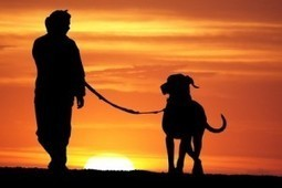 Another Benefit of Owning a Pet....Longer Life | Broken Arrow Veterinarian | Broken Arrow Veterinarians | Scoop.it