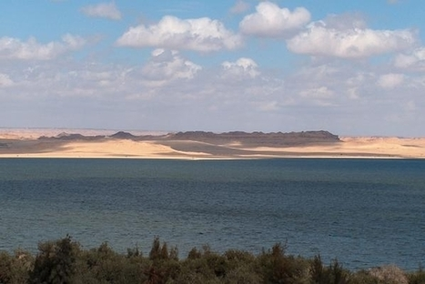 Fayoum Sightseeing Trips from Cairo - Powered by em.com.eg | Cairo tour package | Scoop.it
