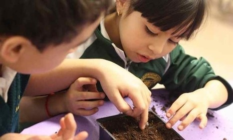 The Gardeneers: Two Chicago School Teachers on a Mission to Change Schools Through Gardens | Heal the world | Scoop.it