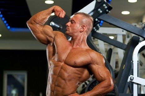 The Best Muscle Building Split to Increase Size and Strength | shopping news | Scoop.it