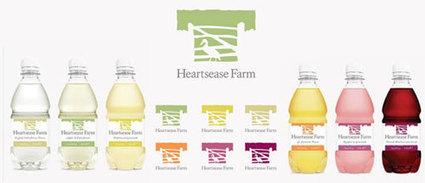 Radnor Hills' Range of Soft Drinks Go Duck-Inspired! | Inspiring Logo Designs | Scoop.it