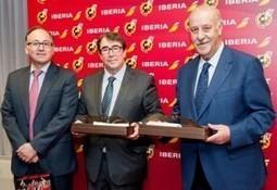 Iberia llevará a la selección española por Brasil durante el Mundial | Noticias de Aerolíneas, rss2 | Revista de turismo Preferente.com | España en el Aire | Scoop.it