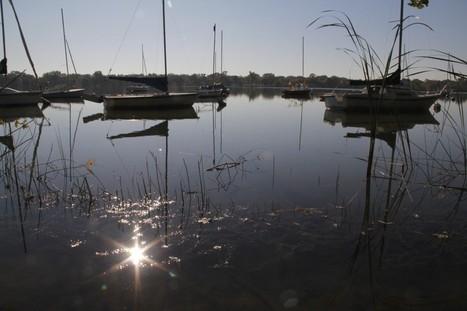 Studies: Endocrine disruptors, cocaine common in Minnesota waters | Food issues | Scoop.it