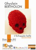 L'échappée belle - Syndromes et Poézies - Ghyslain Bertholon | Actualité Culturelle | Scoop.it