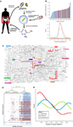 The ISME Journal - The chemical interactome space between the human host and the genetically defined gut metabotypes | Systems biology and bioinformatics | Scoop.it
