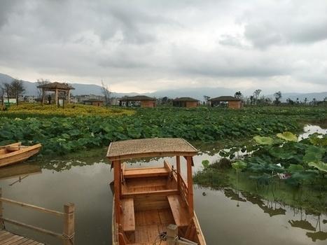 Agroécologie pour l'agriculture et l'alimentation Inra FAO - INRA   AGRONOMIE VEGETAL   Scoop.it