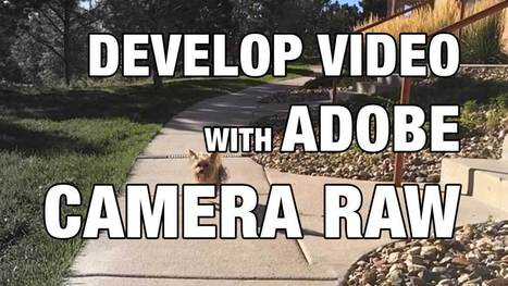 Developing Video Files with Adobe Camera Raw | lightroompresets | Scoop.it