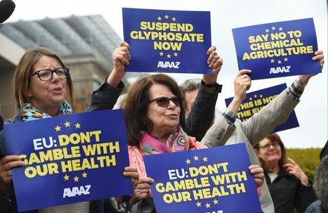 Pesticides: le sort du glyphosate au sein de l'UE toujours en suspens - Liberation | Terre et Eau en région Méditerranéenne | Scoop.it