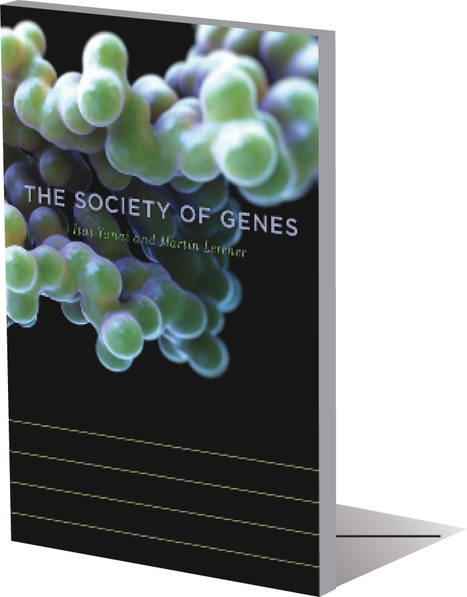 The social gene   Constructal Law of Design in Nature   Scoop.it