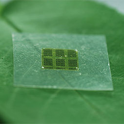 "Computer Chips Made of Wood Could Help Curb Electronic Waste | MIT Technology Review | L'impresa ""mobile"" 