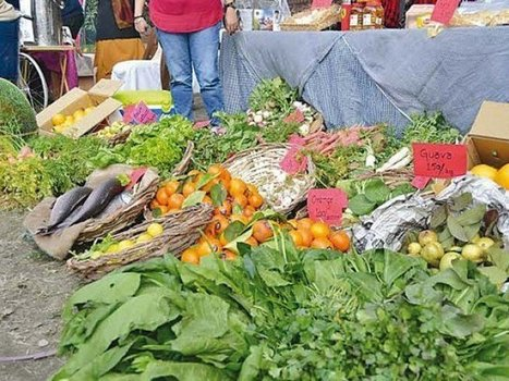 Healthy living: Farmers markets come to Pakistan   South Asia Food and Nutritional Security   Scoop.it