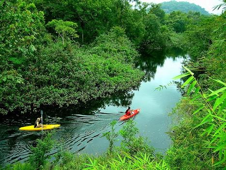 Turismo Responsable: 7 exigencias de los turistas 'verdes' a las agencias de viajes | Gestión Responsable del Turismo | Scoop.it
