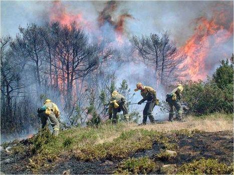 CCOO pide el refuerzo de plantillas contra incendios en verano | Incendios forestales | Scoop.it