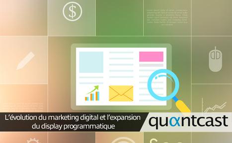 L'évolution du marketing digital et l'expansion du display ... | Marketing et Grands groupes | Scoop.it