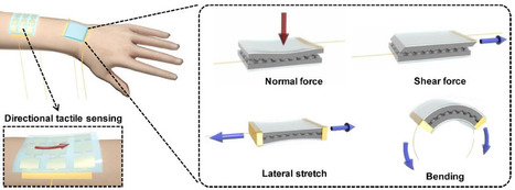 New 'electronic skin' detects pressure from different directions | KurzweilAI | Longevity science | Scoop.it