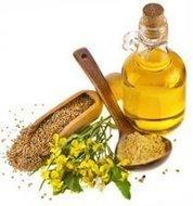 Grassi per la salute | Alimentazione Naturale, EcoRicette Veg e Vegan | Scoop.it
