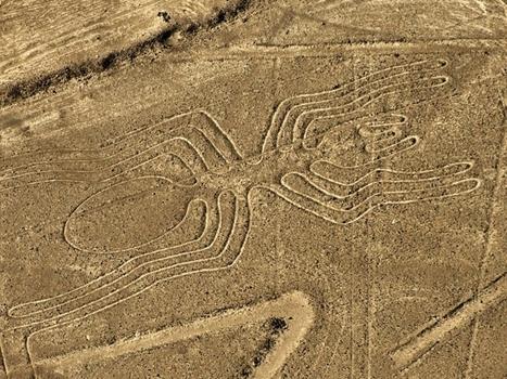 [Photos] De l'araignée à l'astronaute : les mystérieux géoglyphes de Nazca   Variétés entomologiques   Scoop.it