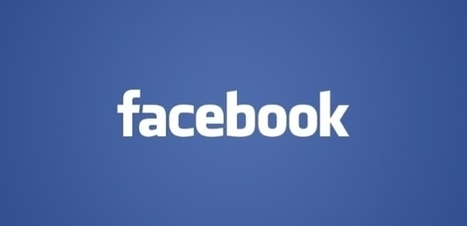 Facebook : le phénomène... est aussi marketing   La veille du Web Marketing, E-commerce et Réseaux Sociaux pour les professionnels   Scoop.it