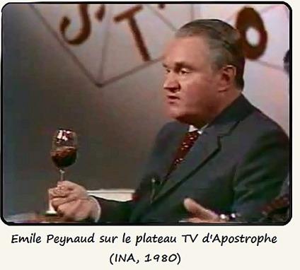 Emile, ou de l'Education - Vin'Art | Oenotourisme en Entre-deux-Mers | Scoop.it