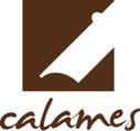 Appel à projets pour conversion rétrospective dans Calames   Classeur virtuel   Scoop.it