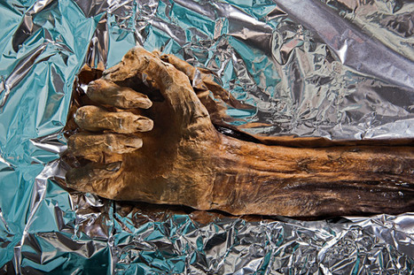 Iceman Autopsy (National Geographic Magazine) | World Neolithic | Scoop.it