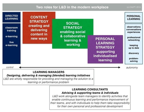 The TWO roles for L&D in the modern workplace: Learning Managers & Learning Consultants | APRENDIZAJE | Scoop.it