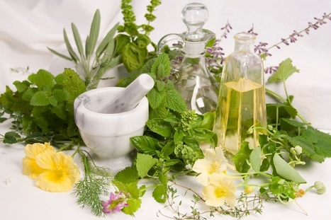 Uncover the Hidden Truth of Essential Oils | Aromaaz International - Buy Pure and Natural Essential oils at Wholesale prices | Scoop.it