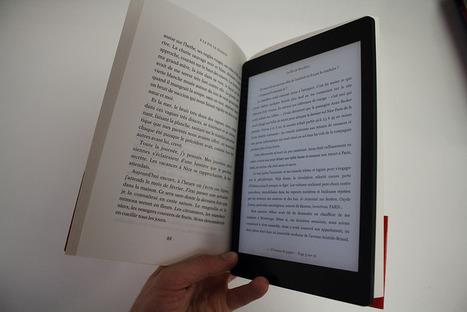 Prêt en bibliothèque : la loi de 2003 concerne livres imprimés et numériques | questionVeille du Service des Ressources et de l'Innovation | Scoop.it