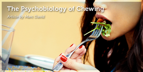 The Psychobiology of Chewing | Health and Wellness | Scoop.it